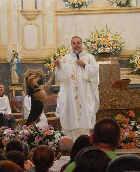 Priest Gomes helps a stray dog find a home during mass