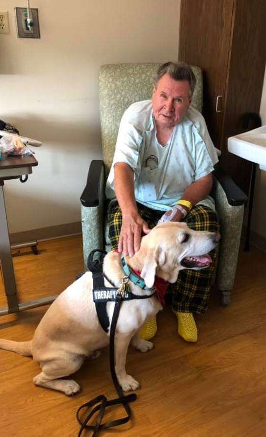 Benji the therapy dog visits a hospital patient
