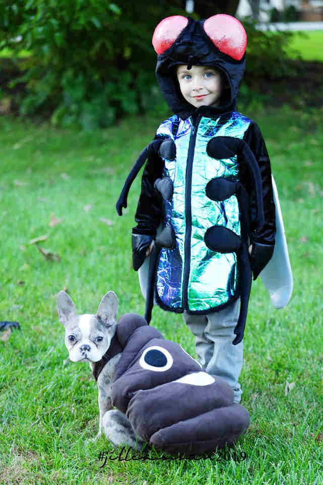 fly and poop costume