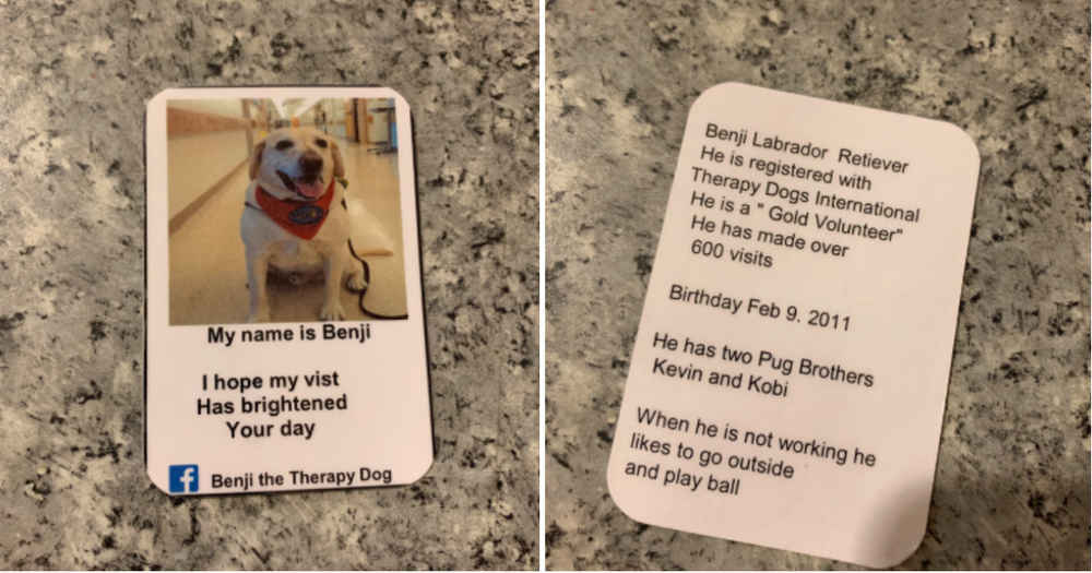 Goodest Boy Has His Very Own Business Cards