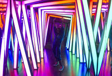 The Coolest New Exhibits to Check out in Philly Before They Disappear