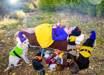 Woman and 7 dogs dress up for Halloween