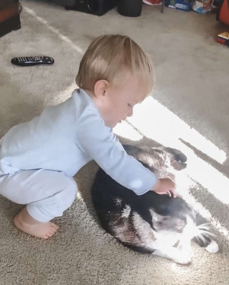 Brody the baby and his cat friend Zora