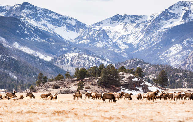 Everything You Need to See and Do in Rocky Mountain National Park