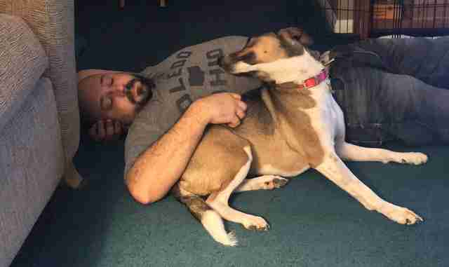 Dog reunites with owner after three years