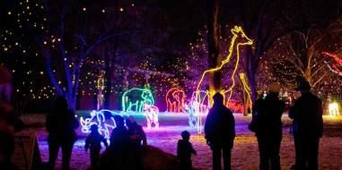 Zoo Lights at Denver Zoo