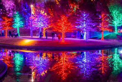 Christmas Lights at Vitruvian Park