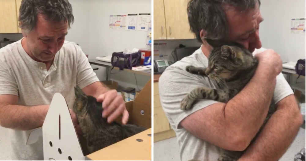 Man Reunites With 19-Year-Old Cat He Thought He'd Lost Forever