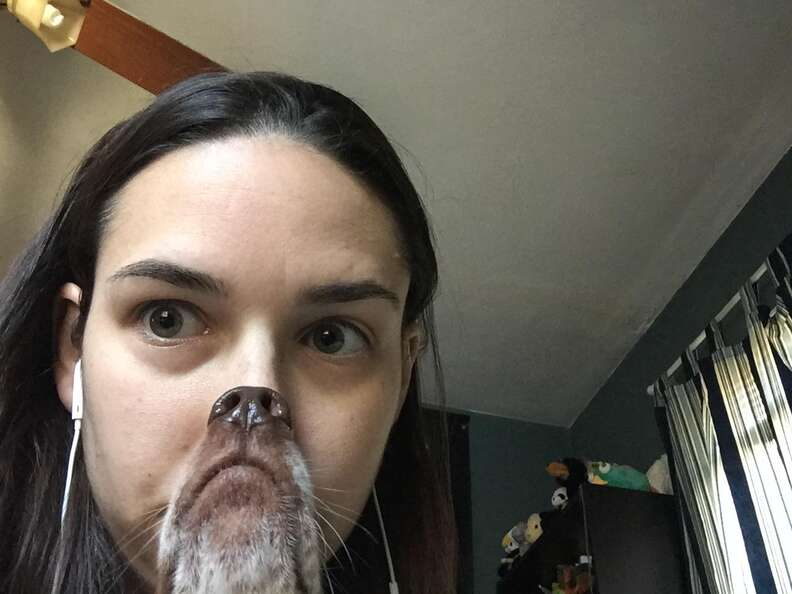 Photo of girl and her dog goes wrong