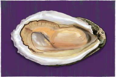 gulf oyster