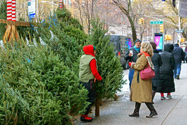 christmas tree shopping midtown nyc