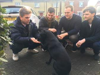 Stevie the dog meets the boys from number 23