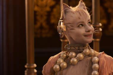 victoria, cats