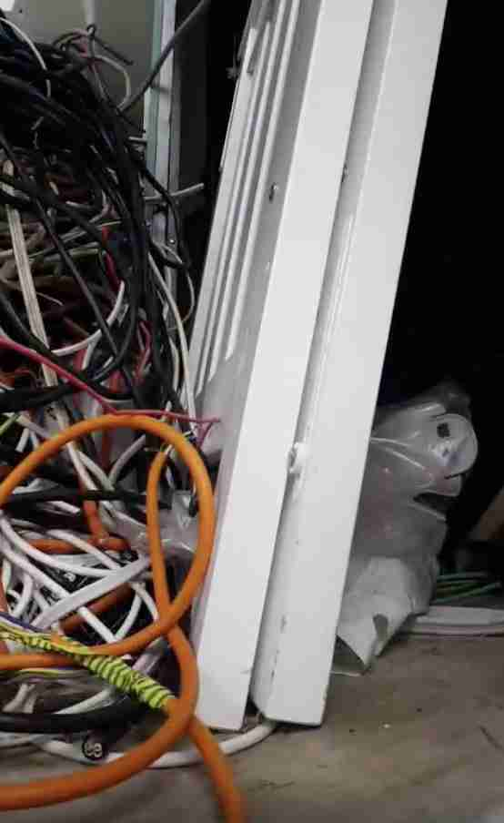 Snake Hides In Pile Of Electrical Wires - The Dodo on