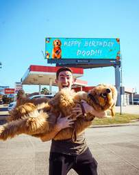 Dog gets a billboard for his first birthday