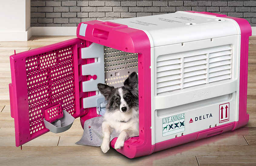 Delta Just Introduced a New Pet Carrier That'll Make Flying Easier