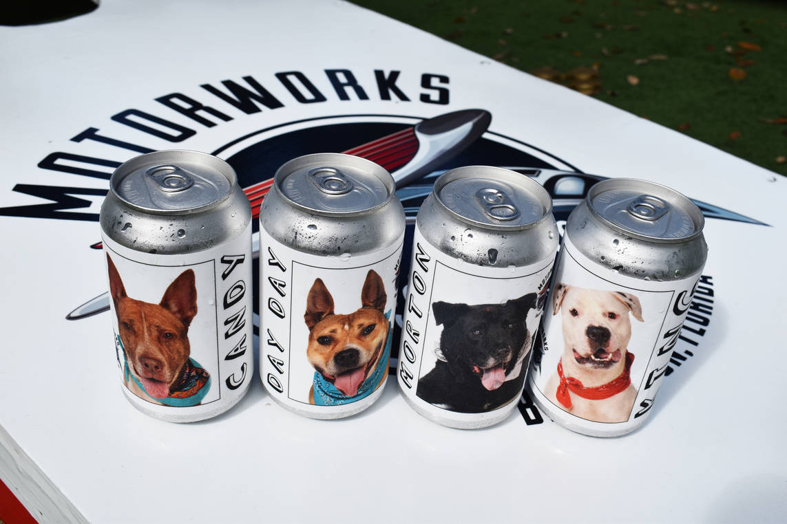 Image result for beer can shelter dogs