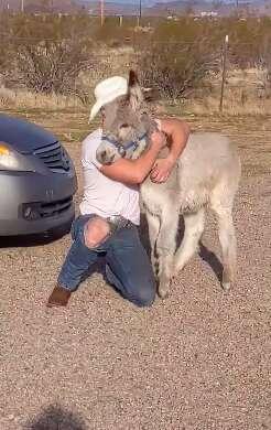 Brad Blake hugs Walter when they reunite