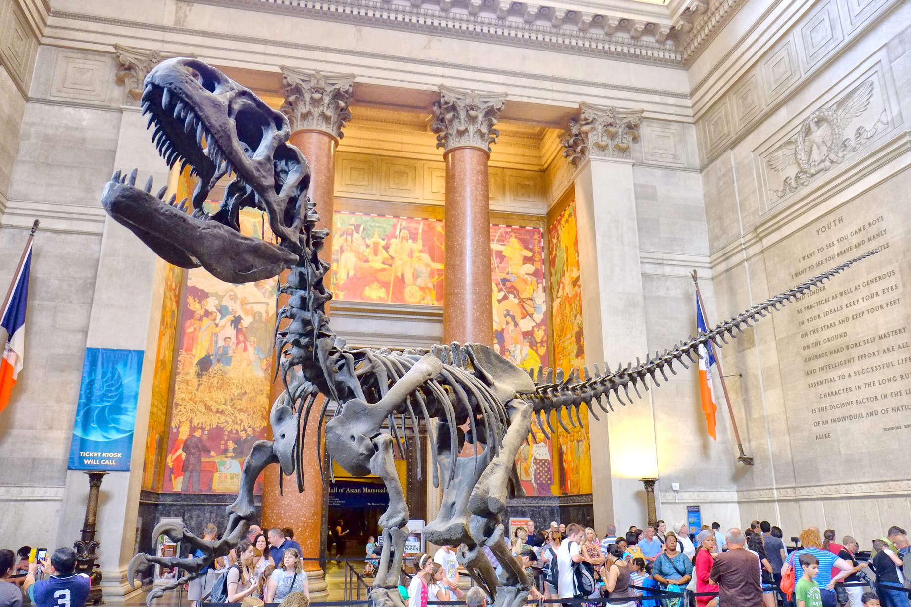 Best Museums in NYC That Are Actually