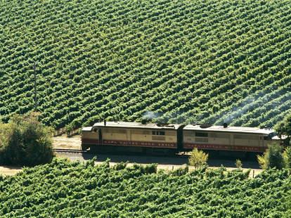 napa valley wine train harry potter