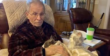 cat comforts dad