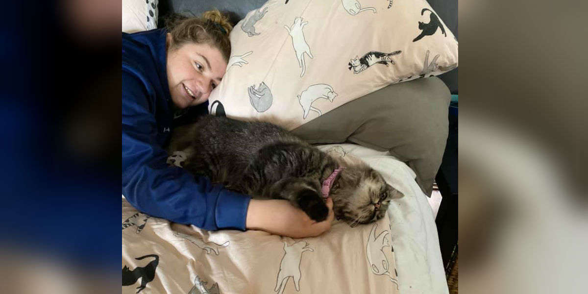 Cat Reunited With Her Family After 6 Years Can't Stop Cuddling With Them