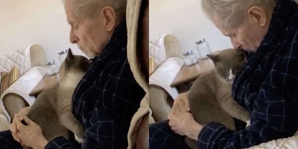 Gentle Cat Spends All Day Comforting His Dad With Alzheimer's