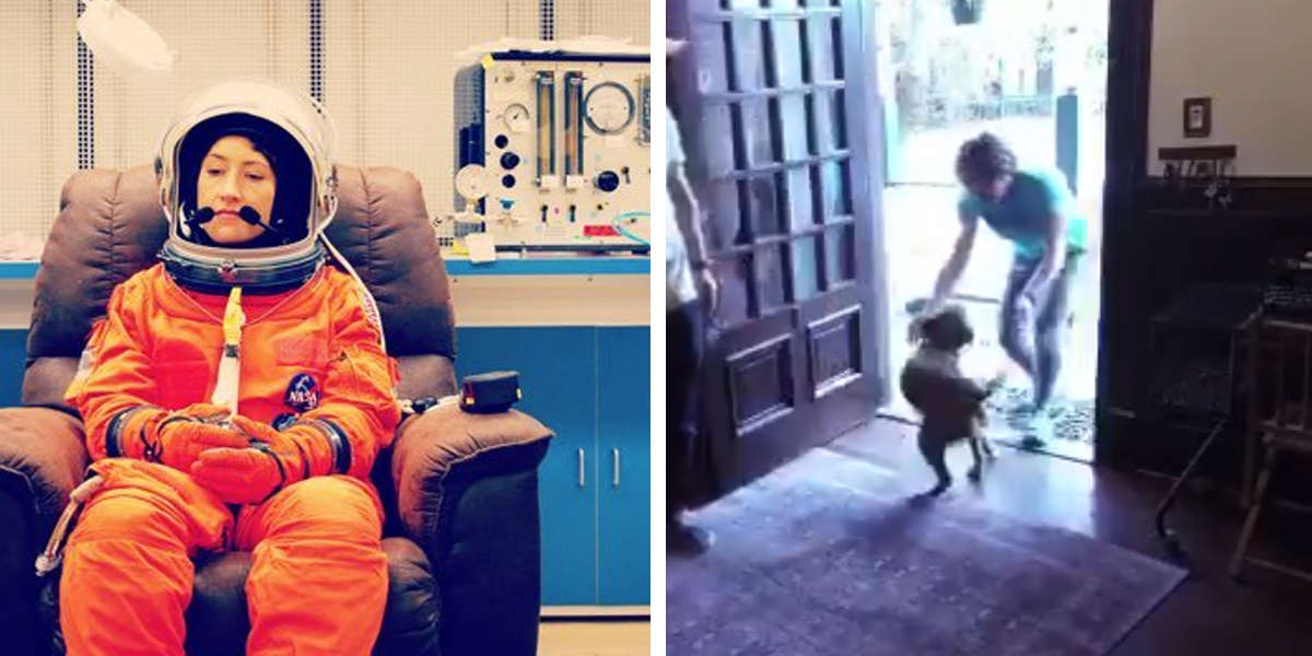 Astronaut Reunites With Her Dog After Spending Nearly A Year In Space