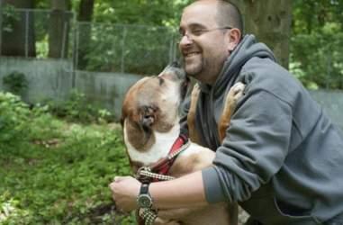 dog at shelter 9 years