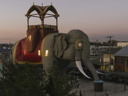 airbnb jersey shore elephant lucy