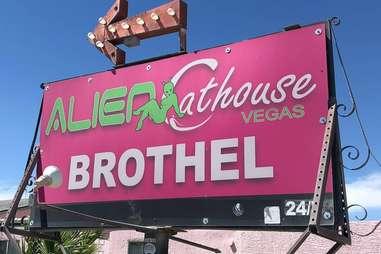 The Alien Cathouse