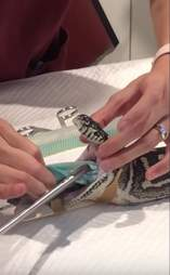 snake swallows beach towel