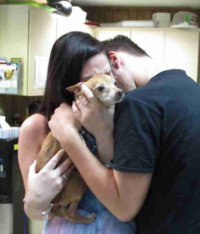 Dog reunites with his owners after six years