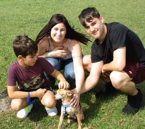 Alex the Chihuahua reunites with family after 6 years