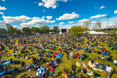 The National Cannabis Festival