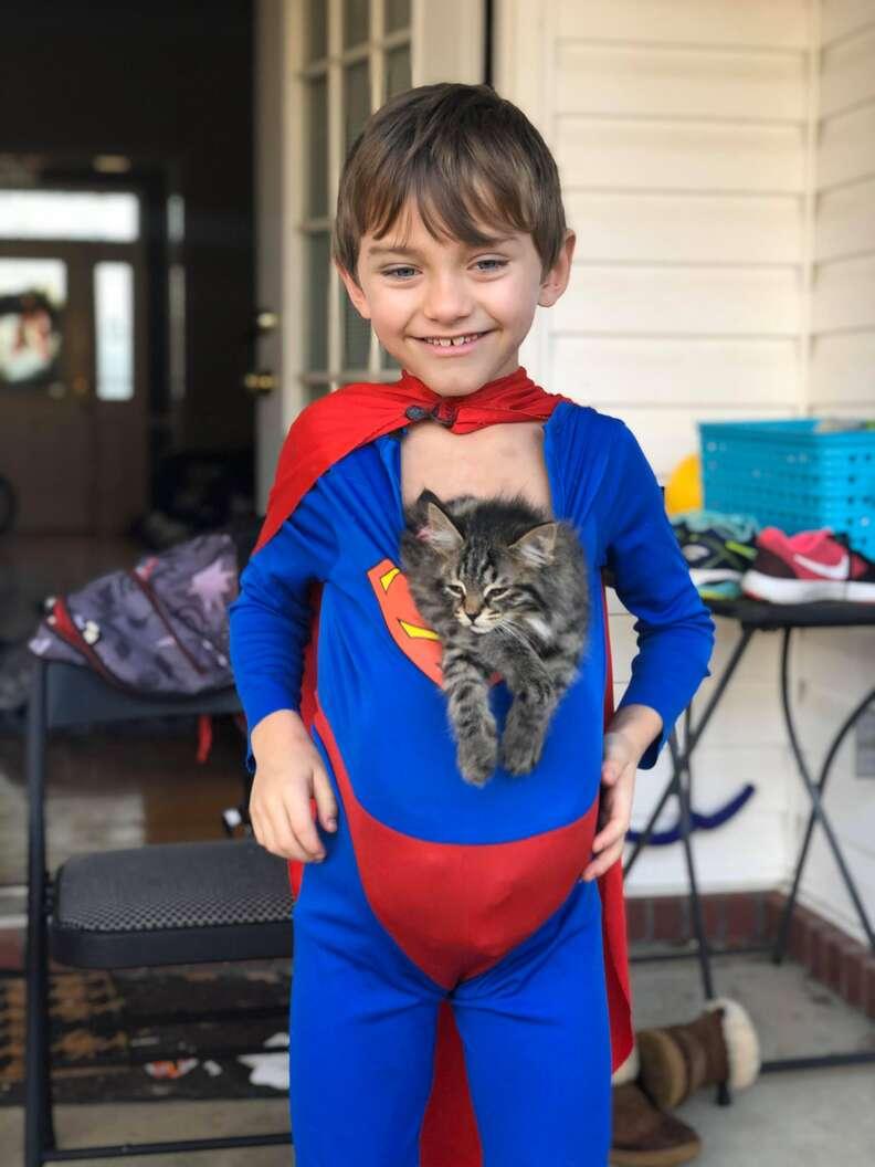 cat hugs boy