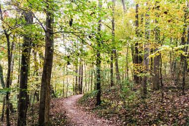 Murphey Candler Trail