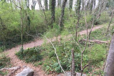 Powers Island Trail