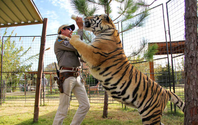The Craziest Moments From Netflix's New Docuseries 'Tiger King'