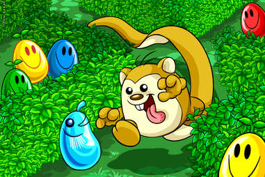neopets meerca chase online game virtual pets neopet neopia games