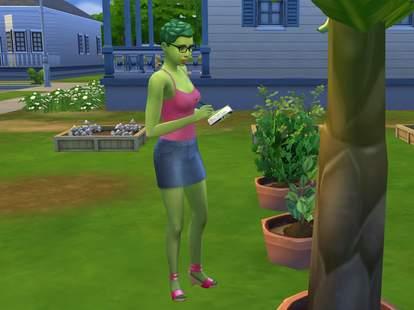 sims plant sim
