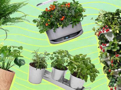 create the perfect home garden