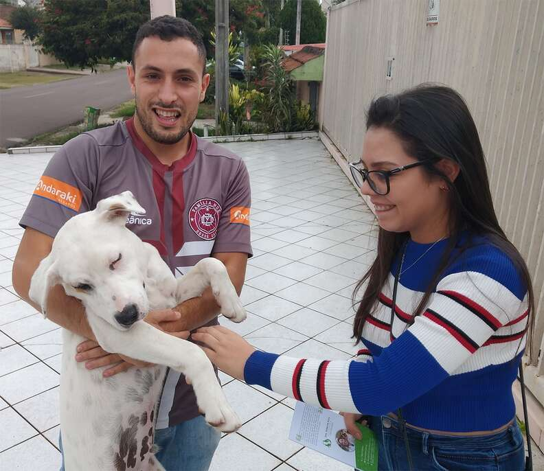 Thor the stray dog is reunited with his owner