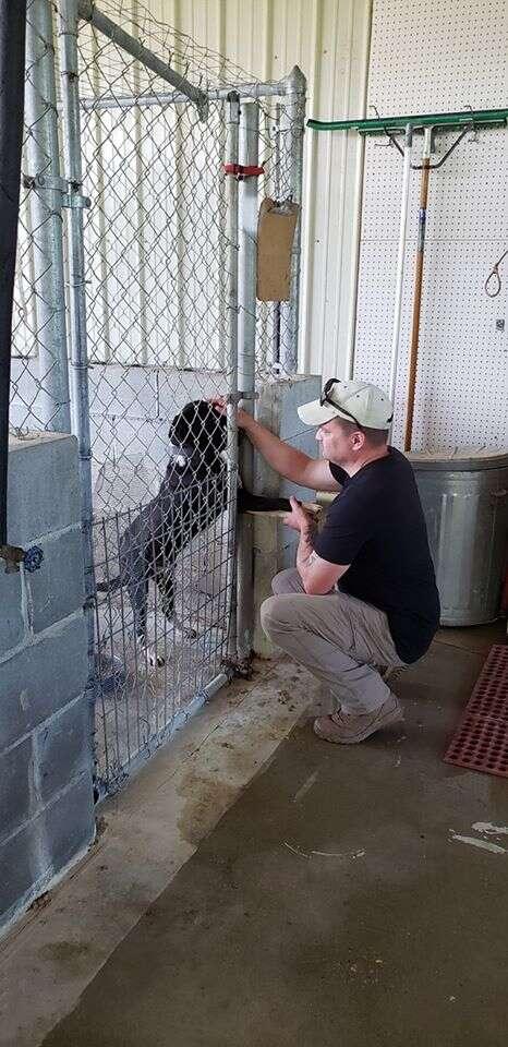 Alabama shelter dog loves humans