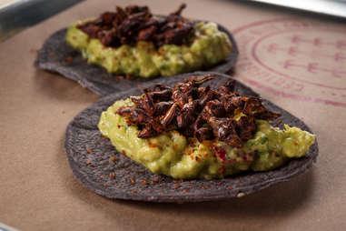 Chapulines tacos