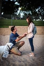 dog helps dad propose