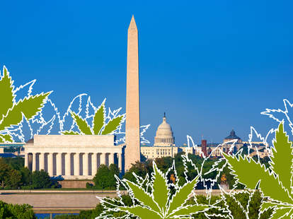 dc weed guide