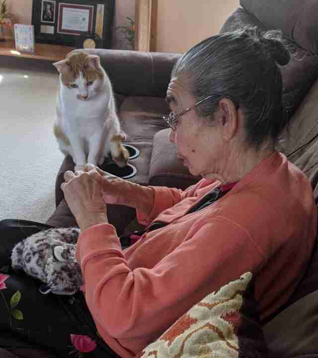 Cat watches grandmother fix his toy