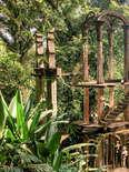 Las pozas at Xilitla