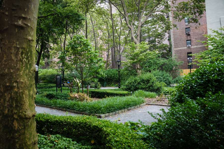 A Guide to Urban Forest Bathing in NYC